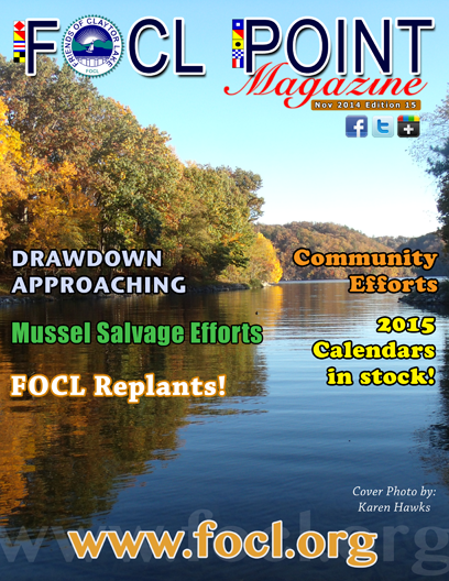 FOCL Point Cover 15
