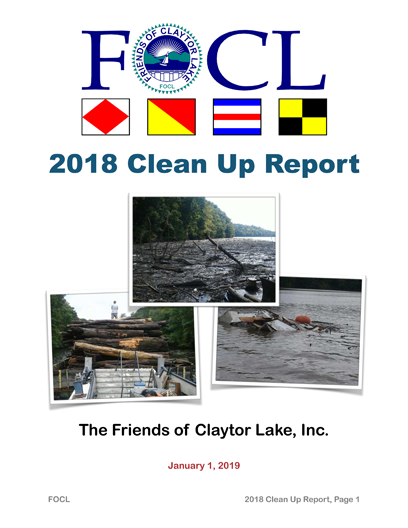 2018-Clean-Up-Report-Master-1